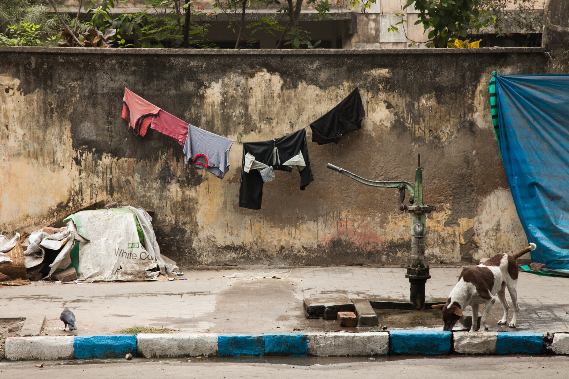 Peter Dressel Photography - Calcutta, India